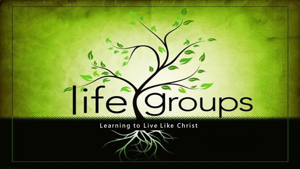Life Groups (Generic)